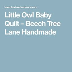 Little Owl Baby Quilt – Beech Tree Lane Handmade
