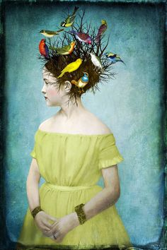 Beth Conklin Songbirds!