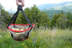 Folding mushroom bag for naturalists by TdRoca 1