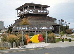   Travelodge Atlantic City   316 E White Horse Pike, Galloway, NJ 08205   (609) 652-0904 www.travelodge.com #Travelodge #AtlanticCity #Galloway #hotel #Vacation