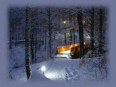winter night at Sovata, Mures #Transylvania