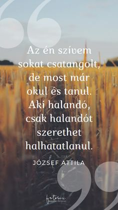 Esküvői idézetek József Attlla Short Quotes, Wise Quotes, Motivational Quotes, Funny Quotes, Inspirational Quotes, Emo, Dear Future, Love Your Life, Good Thoughts