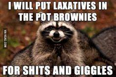 Memes funny teacher class rules 61 Ideas for 2019 Memes Humor, Funny Memes, Humour Quotes, Pet Memes, Funny Gifs, Teaching Humor, Teaching Quotes, Teaching Reading, Learning