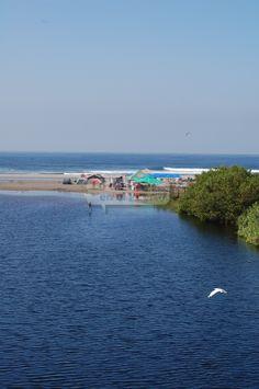 Surfear, avistar aves y otras especies naturales, pasear en lancha, conocer distintos tipos de ecosistemas marinos, atestiguar el nacimiento de tortugas marinas y hasta ser partícipe de su conservación, son algunas de las cosas que le esperan al visitante de la costa michoacana, particularmente en los municipios de Aquila y Coahuayana.