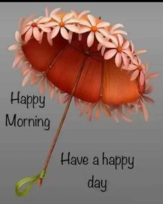Good Morning Gift, Good Morning Arabic, Good Morning Beautiful Images, Happy Morning Quotes, Good Morning Roses, Good Morning Images Hd, Morning Greetings Quotes, Good Morning Picture, Good Morning Friends