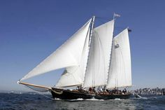 America- coming to Beaufort, North Carolina this week! Can tour & even go on a sail! Sept. 21-22. 2016