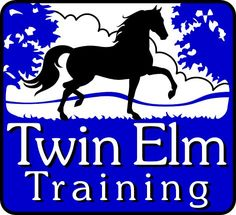 Custom horse logo created for Twin Elm Training at twinelmtraining.com - Copyrighted by new owner. You can purchase your own custom logo at Horse-Logos.com  #horselogo #equine #graphic #equestrian #design #brand #branding #logo Horse Clip Art, Horse Clipping, Horse Logo, Horse Silhouette, Horse Stables, Equine Art, Silhouette Projects, Custom Logos, Equestrian