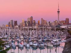 Auckland, New Zealand: 75 degrees American Airlines just announced daily service from Los Angeles to Auckland—New Zealand's largest city—which averages about 75 degrees in December. The Langham Auckland, located at the top of the city's main shopping district, plans on celebrating Christmas Eve, Christmas Day, and Boxing Day with several dinners and holiday-themed teas.