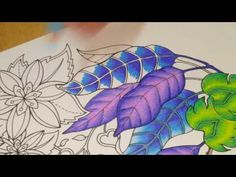 MAGICAL JUNGLE | Adult Coloring Book by Johanna Basford | Coloring With Colored Pencils - YouTube