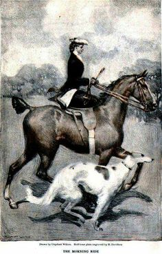Riding a fancy (Hackney?) bobbed-tail horse with a Borzoi dog following close by.