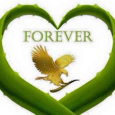 Forever Living is the world's largest grower, manufacturer and distributor of Aloe Vera. Discover Forever Living Products and learn more about becoming a forever business owner here. Forever Living Company, Forever Living Clean 9, Forever Living Business, Forever Aloe, Forever Living Aloe Vera, Forever Freedom, Love Me Forever, Forever Young, Jojoba Shampoo