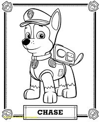 24 Best Paw Patrol Images On Pinterest In 2018 Birthday Party