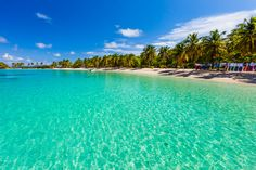 Beach Spotlight: Saltwhistle Bay, Mayreau - St. Vincent and the Grenadines - Caribbean.Answers.com. One of the most beautiful beaches in all the Caribbean!