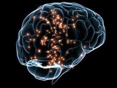Nuova linfa per il nostro cervello
