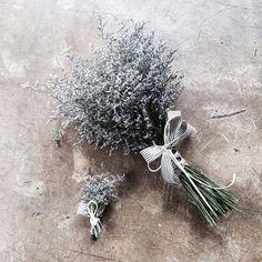 . Lesson Order Katalk ID vaness52 E-mail vanessflower@naver.com . #vanessflower #vaness #flower #florist #flowershop #handtied #flowergram #flowerlesson #flowerclass #바네스 #플라워 #바네스플라워 #플라워카페 #플로리스트 #꽃다발 #부케 #원데이클래스 #플로리스트학원 #화훼장식기능사 #플라워레슨 #플라워아카데미 #꽃수업 #꽃스타그램 #부케 #花 #花艺师 #花卉研究者 #花店 #花艺 . . #미스티블루 . . 몽환적인 느낌있는 미스티블루