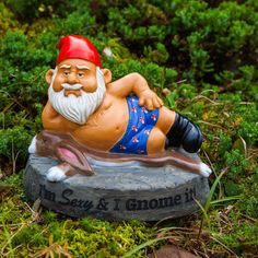 He's sexy and he gnomes it! Could definitely use one of these BigMouth Inc Garden Gnomes to give me a laugh every time I come home Funny Garden Gnomes, Yard Gnomes, Funny Gnomes, Gnome Garden, Fairies Garden, Garden Toys, Fairy Statues, Gnome Statues, Garden Statues