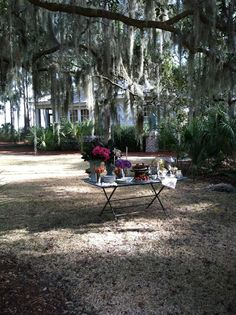 All Things Farmer: Spring picnic in the Low Country