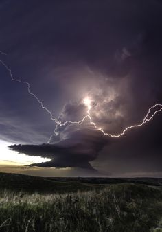 Photograph Forked Bolt by Jay Bell, lightning, thunder storm, cloudy sky… Weather Cloud, Wild Weather, Tornados, Thunderstorms, Fuerza Natural, Thunder And Lightning, Lightning Bolt, Lightning Storms, Lightning Tattoo