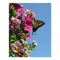 =>>Cheap          Butterfly and Flowers II Print           Butterfly and Flowers II Print online after you search a lot for where to buyDeals          Butterfly and Flowers II Print Review from Associated Store with this Deal...Cleck Hot Deals >>> http://www.zazzle.com/butterfly_and_flowers_ii_print-228849713079563395?rf=238627982471231924&zbar=1&tc=terrest