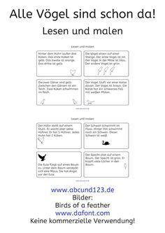 Vögel, Wahrnehmungstraining, Wahrnehmung, Download, AFS-Methode, Stephany Koujou, Koujou, Legasthenie, Legasthenietraining, Dyskalkulie, Dyskalkulietraining, Lesematerial