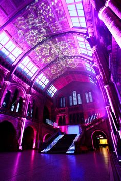 Follow #Professionalimage #EventPhotography – for Rates, Info & Availability ~ Natural History Museum Central Hall 2