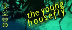 The Young Housefly by Laurence Vannicelli