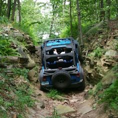 Jeep Jamboree USA Coal Mountain 2015