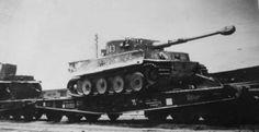 Tiger schwere PanzerAbteilung 503