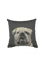TAPESTRY BULLDOG 50X50CM SCATTER CUSHION