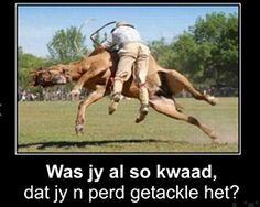 88 Best Afrikaans Images Funny Stuff Hilarious Entertaining