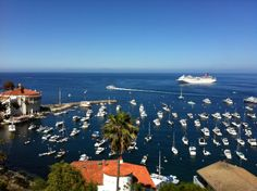 Photo of Catalina Island by Drew Mauck