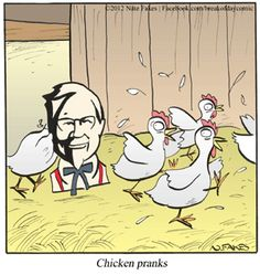 Chicken humor: The Colonel is coming for you girls! Run!