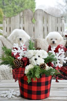 Monday Morning Blooms: Lola and Gracie-Inspired Puppy Bouquet – Home is Where the Boat Is Christmas Flower Arrangements, Beautiful Flower Arrangements, Floral Arrangements, Diy Dog Flower Arrangement, Christmas Wreaths, Christmas Crafts, Christmas Decorations, Puppy Flowers, Flower Bouquet Diy