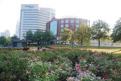 Bicentennial Park & Scioto Mile in Downtown Columbus, OH Bicentennial Park, Columbus Ohio, Dolores Park, Landscape, Travel, Viajes, Trips, Landscaping, Tourism