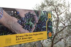 Comunicazione sul territorio Olio Riviera Ligure DOP #Liguria