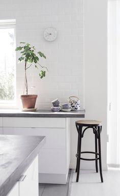 Bänkskiva i betong, fasat kakel med vit fog och ett fikonträd