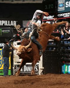 Nathan Schaper breaks out with his first BFTS win riding Percolator for 79 points. Photo by Andy Watson.