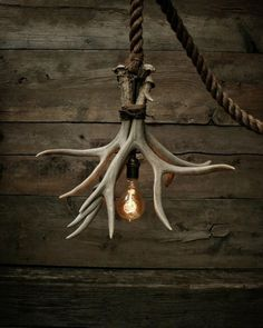 The Cabin Lit Chandelier Antler Shed Pendant Rope by MoonStoneFox