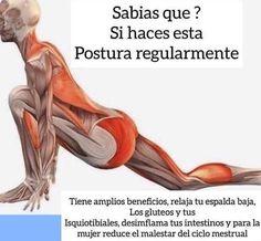 Sabias Que. Yoga Mantras, Yoga Meditation, Fitness Del Yoga, Health Fitness, Yoga Sequences, Yoga Poses, Yoga Routine, Yoga Tips, Pilates Workout