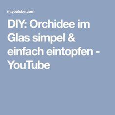 DIY: Orchidee im Glas simpel & einfach eintopfen - YouTube