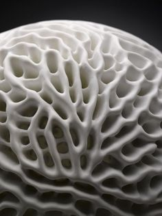 Le Manoosh - via http://bit.ly/epinner Material Design, Shape Design, Organic Shapes, Organic Form, Organic Patterns, Organic Structure, Cell Structure, White Texture, Texture Art
