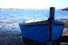Blue boat Blue Boat, Social Media, Social Networks, Social Media Tips