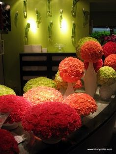 Carnations can be beautiful