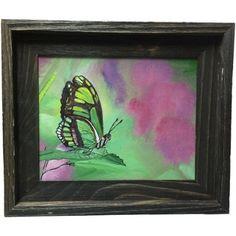 PEINTURE_INSECTES Papillon verdoyant_Acrylique