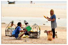 Ko Tao, grilled corn, Do you want 1? #KoTao #Travel #Thailand  ++ English language support >> http://ThailandHolidays7.com