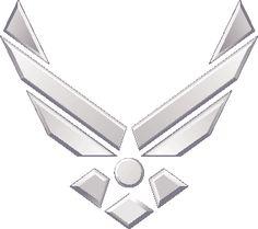 The Air Force Association (AFA)