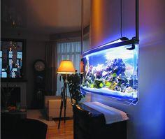 Aquariums on pinterest aquascaping aquarium and fish tanks for Spacearium aquariums