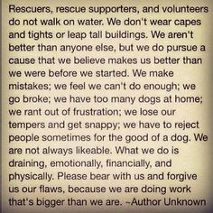 For My Rescue Friends: