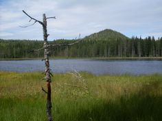 :) Sweden, Mountains, Nature, Travel, Naturaleza, Viajes, Destinations, Traveling, Trips