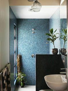 douche de plain pied, lumière naturelle et plante tropicale dans la douche... sans terre! jolie mosaique bleu foncé dans la salle de bain moderne